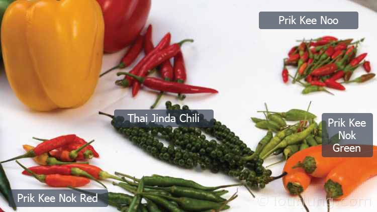 Easy Thai Chicken with Basil Recipe – Pad Krapow Gai Stir-Fry with Fried Egg