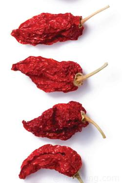 Photo of teh Bhut Jolokia
