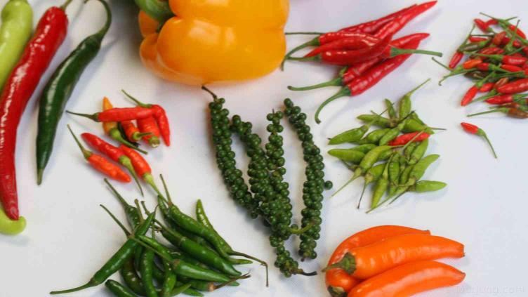 photo of various chilies on a table