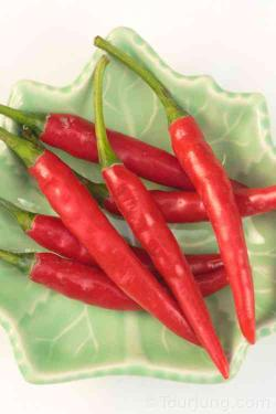 photo of Thai Jinda chili - the mainstay of Thai spicy dishes
