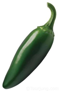 Photo of a Jalapeno Chili pepper