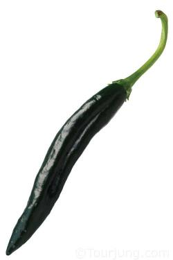 Photo of the Pasilla Chili pepper