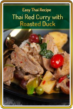 photo of Thai Red Duck Curry for Pinterest