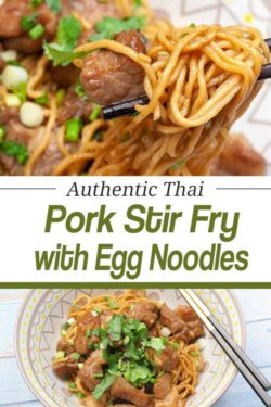 pin image for delicious stir fried pork with garlic egg noodles