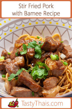 Stir fried pork with egg noodles navigation image