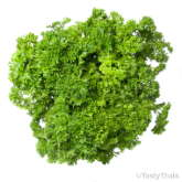 Generic Product Image - Parsley