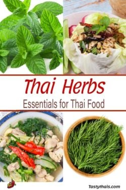 Thai Herbs Featured in Thai Herb Soup and Larb Salad