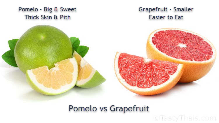 Pomelo versus Grapefruit - Skin & Pith Differences